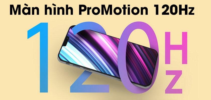 Màn hình ProMotion 120Hz, tấm nền LTPO trên iP 13