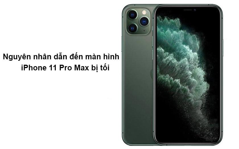Nguyên nhân dẫn đến màn hình iPhone 11 Pro Max bị tối